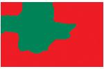 Lohmann Rauscher : esparadrapos, compresas, cuidados y tiritas